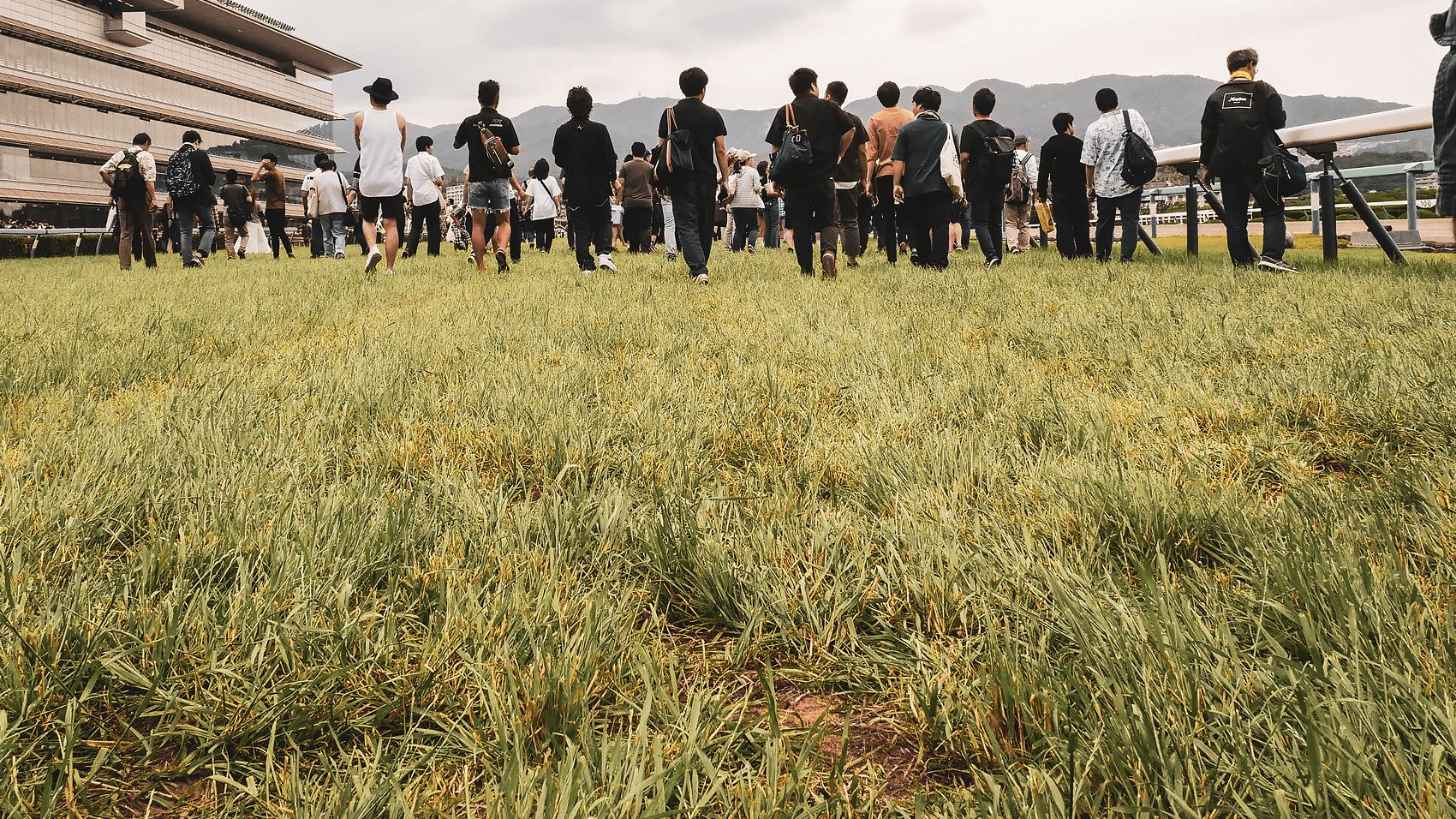 宝塚記念のあとに阪神競馬場の芝コースの上を歩いてみた