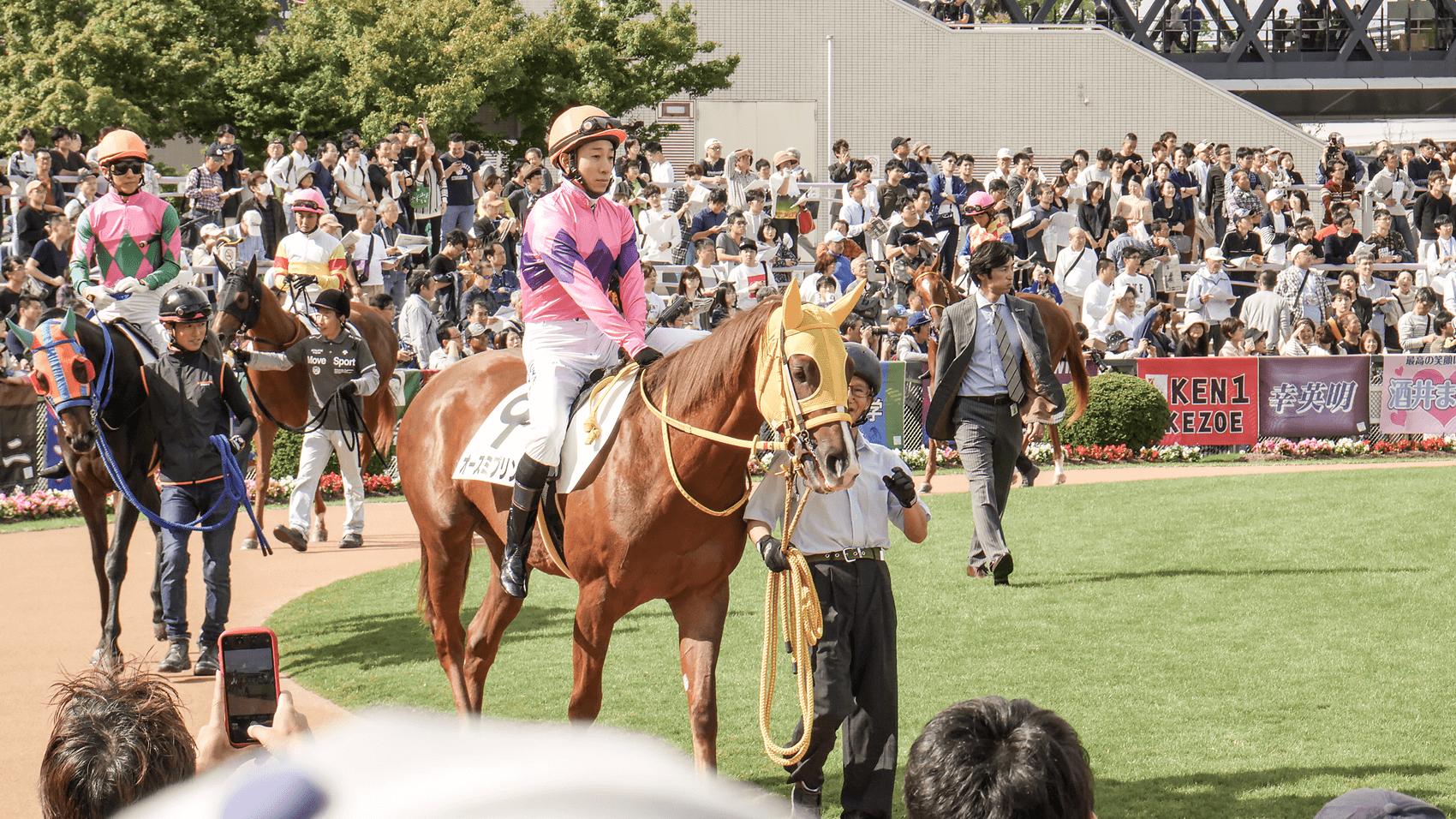 いよいよ秋競馬が開幕。クラシック三冠目の菊花賞を観戦に京都競馬場へ