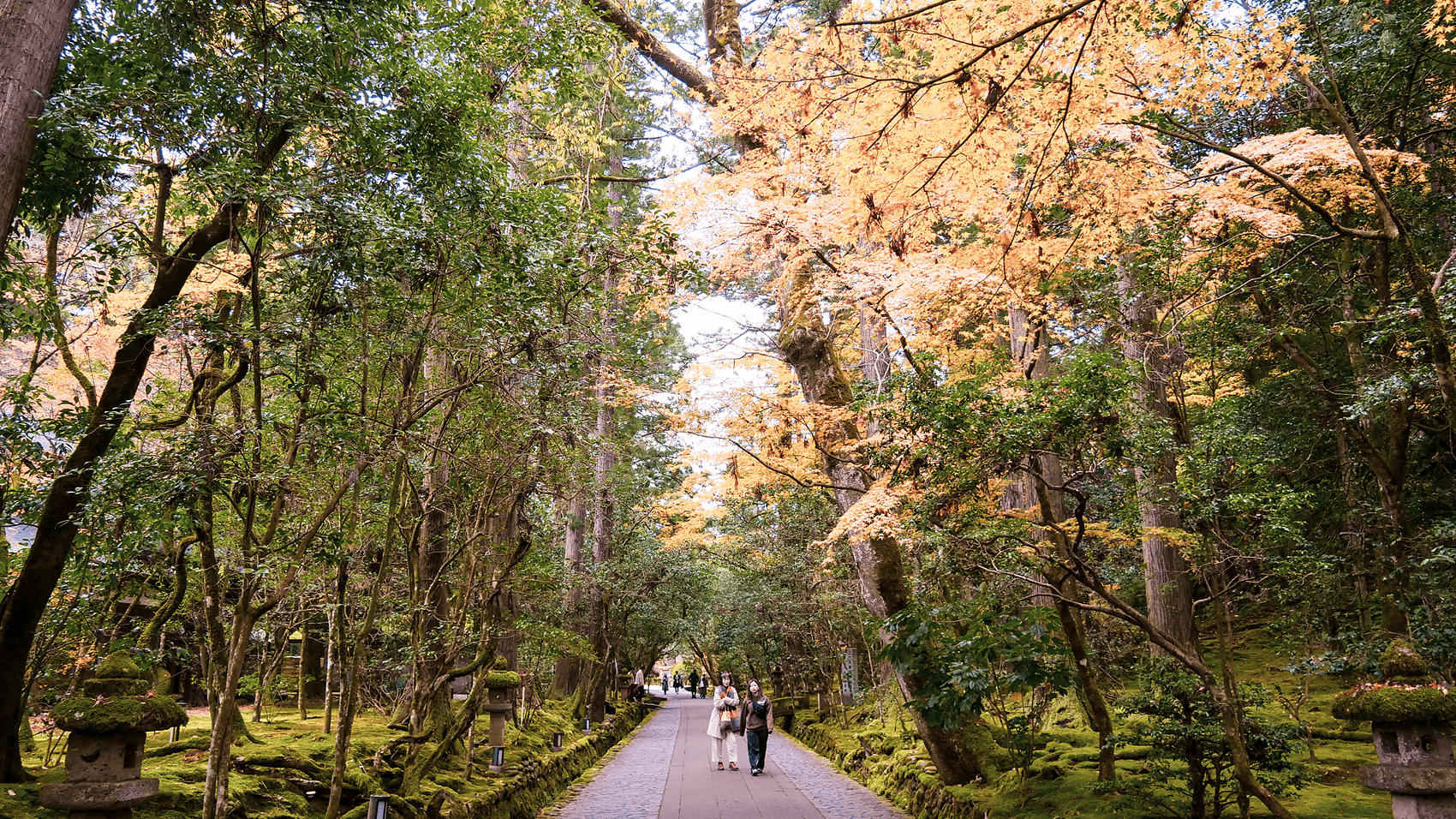 那谷寺内の森林