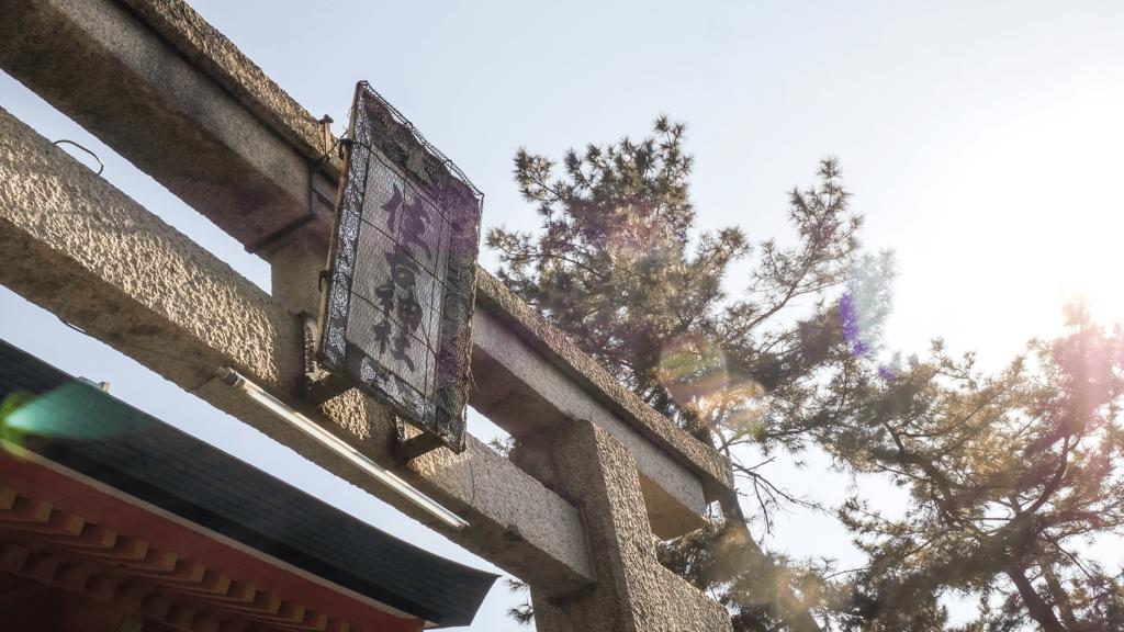 今年も住吉大社にて初詣。2020年のおみくじの結果は?